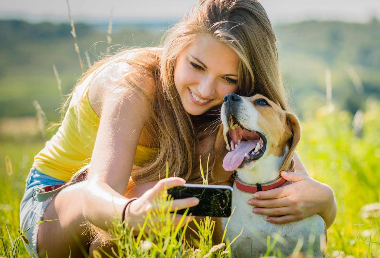comment bien choisir son chien, conseils du bloblog