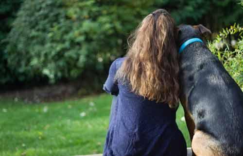 Comportementaliste Canin dans le Brabant Wallon